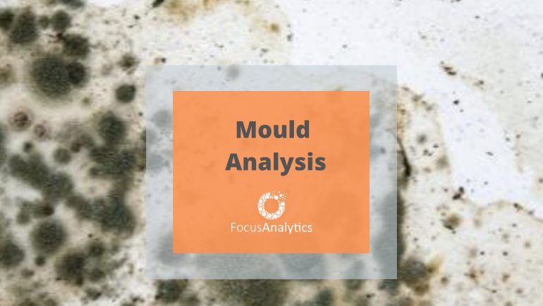 Mould Analysis